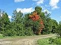 Déja les couleurs de l`automne le 26 août 2008 - panoramio.jpg