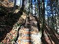 D-BY - Rohrbachtobel im Wirlinger Forst 1628.JPG
