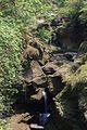 DAVIS fall in pokhra (6).jpg
