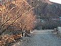 Dardeh-Livar (درده - لیور) - panoramio.jpg