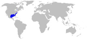 Atlantic stingray - Image: Dasyatis sabina rangemap