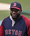 David Ortiz on July 27, 2013.jpg
