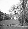 De tuin van de heer Numann, Bestanddeelnr 252-1918.jpg