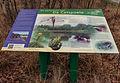 Delleboersterheide – Catspoele Natuurgebied van It Fryske Gea. Informatiebord 02.jpg