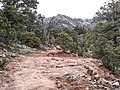 Derrick Trail, Payson, Arizona - panoramio (1).jpg