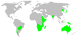 Distribution.trochanteriidae.1.png