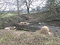 Disused quarry, Hartsheath - geograph.org.uk - 692588.jpg