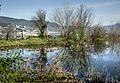 Dojran Lake 226.jpg