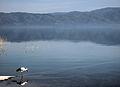 Dojran Lake 257.jpg