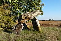 Dolmen-de-Fontenaille-PA00105379.jpg