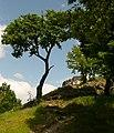 Drégely - panoramio.jpg