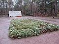 Dresden Heidefriedhof Aschegrab.JPG