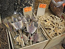 Dried Lizard and Starfish (theloneconspirator).jpg