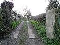 Drive, Hudswell - geograph.org.uk - 2405105.jpg