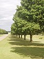 Driveway to Wrest park - geograph.org.uk - 190301.jpg