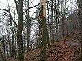 Dscn3505 - panoramio.jpg