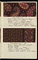 Dyer's Record Book (USA), 1880 (CH 18575299-44).jpg