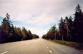 European route E4 - Image: E4 landsväg