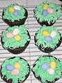 Easter cupcakes - colourful chocolate eggs on green nest icing.jpg