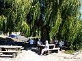 Eckweiler - 30. August 2015 - panoramio (5).jpg
