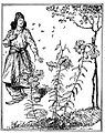 Edmund J Sullivan Illustrations to The Rubaiyat of Omar Khayyam First Version Quatrain-068.jpg