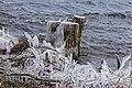 Een ijzige wind waait over de Put van Nederhorst 02.jpg