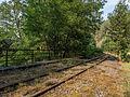 Eisenbahnlinie-Saalestauseen-8132393.jpg