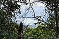 Emerald Reservoir 翡翠水庫 - panoramio.jpg