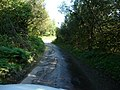 Exmoor , Wet Country Road - geograph.org.uk - 1508074.jpg