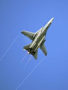 F-14B VF-101 Airshow 2004.jpeg