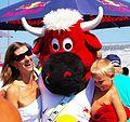 FC Red Bull Salzburg gegen SK Rapid Wien (19. Juli 2014) 02.JPG