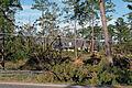 FEMA - 11199 - Photograph by Jocelyn Augustino taken on 09-23-2004 in Alabama.jpg