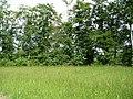 FFH NS Obere Hunte BfN 3616-301 WDPA 555518955 EEA DE3616301 01.jpg