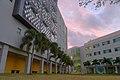 FIU College of medicine buildings.jpg
