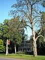 Fairmount Park 039.jpg
