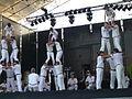 Falcons a la Mercè 2007 P1080452.JPG