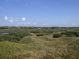 Fanoe - dunes