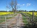Farm road to Merrington Mill Farm - geograph.org.uk - 404422.jpg