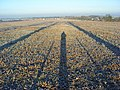 Farmland, Ewelme - geograph.org.uk - 1082124.jpg