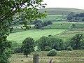 Farmland and Esgair Hir, Ceredigion - geograph.org.uk - 520035.jpg