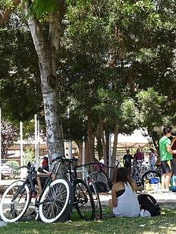 Feria cliclista - Santiago de Chile - Barrio Bellavista