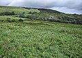 Fields above Tyneham - geograph.org.uk - 1521832.jpg