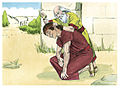 First Book of Samuel Chapter 16-10 (Bible Illustrations by Sweet Media).jpg