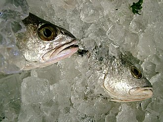 Fish preservation - Image: Fish Packed in Ice