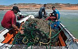 Fishing in El Manglillo Bay, Margarita Island 07.jpg