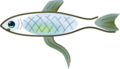 Fishlogo.png