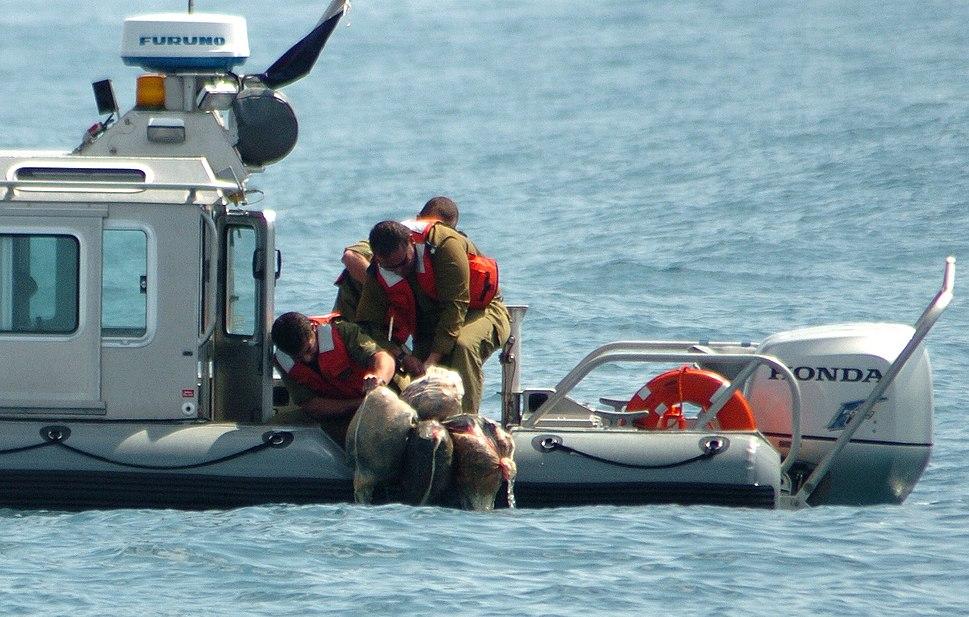 Flickr - Israel Defense Forces - Arms Smuggling Thwarted in Gaza