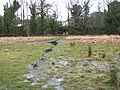 Flooded path to Whitlingham Lane - geograph.org.uk - 1671092.jpg