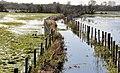 Flooding, Portadown (3) - geograph.org.uk - 2679791.jpg