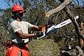 Florida National Guard (43463529850).jpg